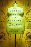 Book cover of The Little Giant of Aberdeen County