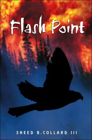Book cover of Flash Point