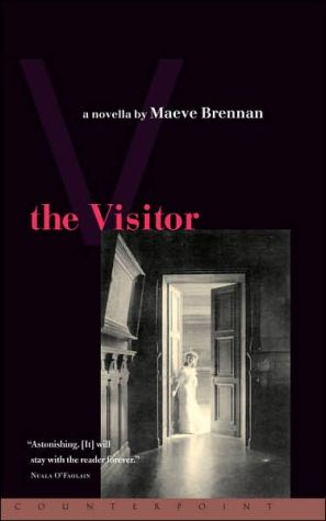 Book cover of The Visitor